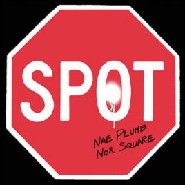 spot_nae cover